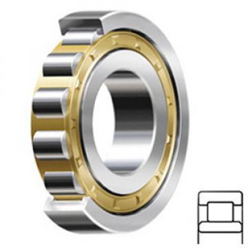 FAG Rodamientos NU340-E-M1-C3 Rodamientos de Rodillos Cilíndricos