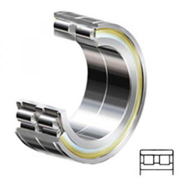 INA SL024928-C3 Rodamientos de Rodillos Cilíndricos