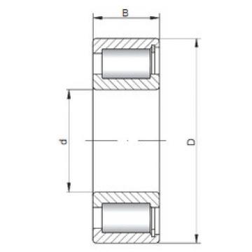 Rodamiento NCF2930 V ISO