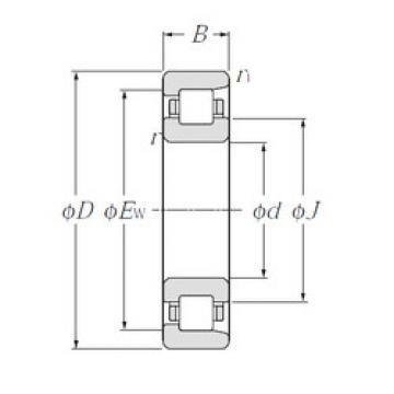 Rodamiento NF405 NTN