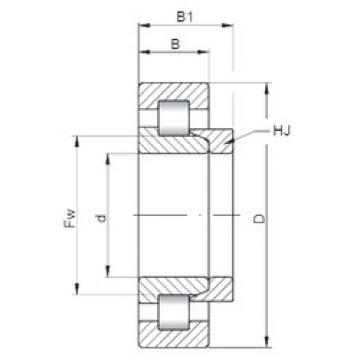 Rodamiento NH2305 ISO
