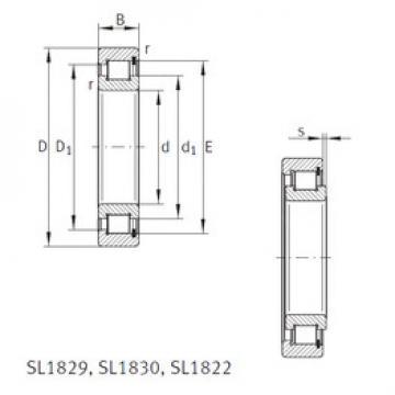 Rodamiento SL181892-E INA
