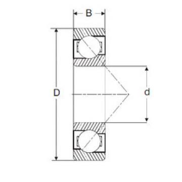 Rodamiento 7206-B SIGMA